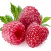 Raspberry Ketones Diet And You