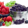 Losing Weight with Acai Berry and Its Health Benefits