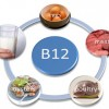 Vitamin B12 Deficiency Diet Therapy Should Be The Preferred Solution