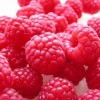 How Do Raspberry Ketones Cause Weight Loss