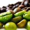 Truth About Green Coffee Bean Extract