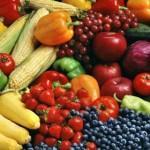 Calorie Reduction Diet
