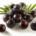 Myths About the Acai Berry