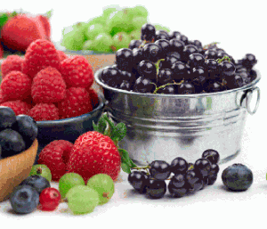 Losing Weight with Acai Berry